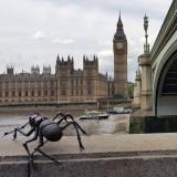 Prospektoři Londýn