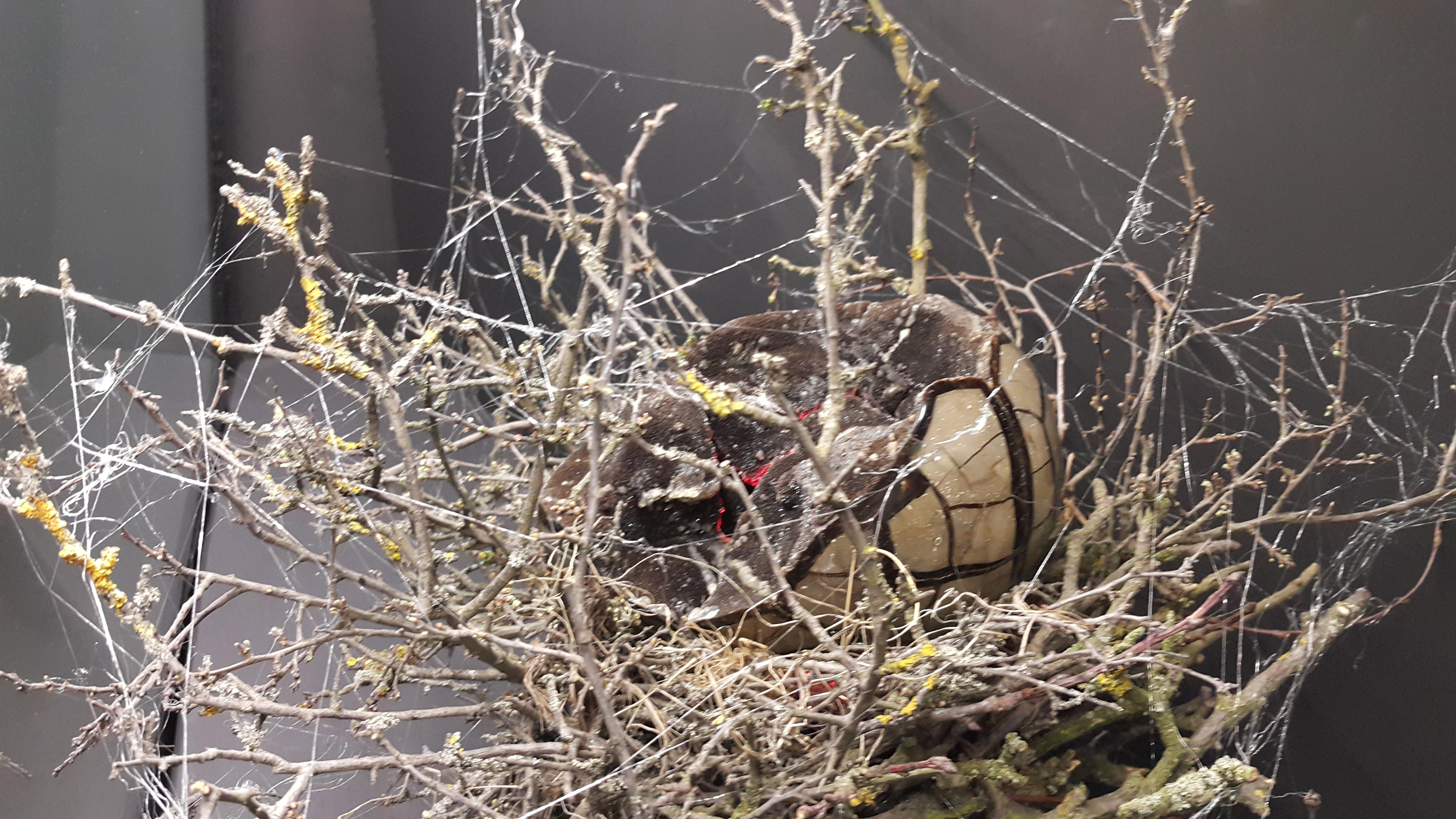 Dračí vejce Zlatokopa Henryho začíná žhnout