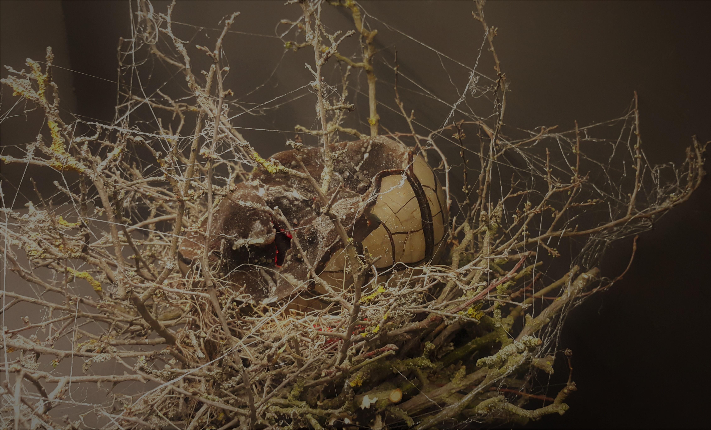 Dračí vejce Zlatokopa Henryho se rozehřívá