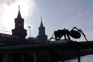 Mravenci se museli uklidnit u romantického nábřeží